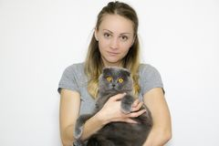 En gros plan pris par photo modèle à la taille, modèle tient un chat dans des ses bras images libres de droits