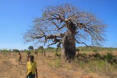 En grupp av afrikanska barn som spelar nära en stor baobab royaltyfri bild