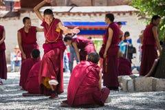 En grupp av att debattera tibetana buddistiska munkar på Sera Monastery Arkivbild