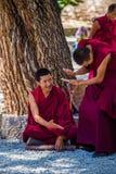 En grupp av att debattera tibetana buddistiska munkar på Sera Monastery Arkivbilder