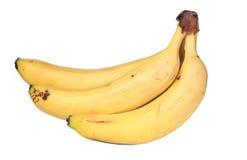 En grupp av bananer Royaltyfri Fotografi
