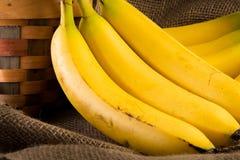 En grupp av bananer Arkivbild