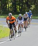 En grupp av cykelryttare Arkivfoton
