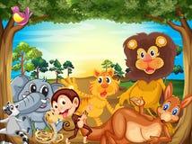 En grupp av djur som kopplar av under trädet Arkivbild