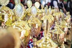 En grupp av guld- briljanta troféer väntar på deras vinnare royaltyfri foto