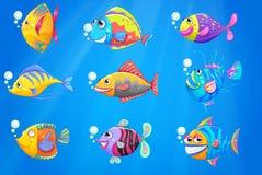 En grupp av härliga fiskar under havet Arkivbild