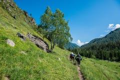 En grupp av hästryggturister som rider längs klyftan arkivbilder