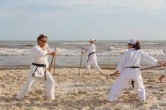 En grupp av idrottsm?n utbildar i karate p? havskusten royaltyfri fotografi