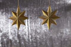 En grupp av julstjärnan Arkivfoton