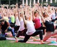 En grupp av kvinnor, i att ta en utomhus- yogagrupp i New York City Royaltyfri Bild