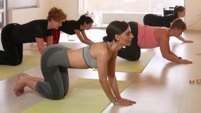 En grupp av kvinnor som gör yoga arkivfilmer