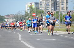 En grupp av maratonkonkurrenter under den 29th Belgrade maraton på April 16, 2016 i Belgrade, Serbien Arkivbilder