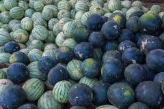 En grupp av mogna vattenmelon Jordbruks- kultur av Ukraina arkivbilder