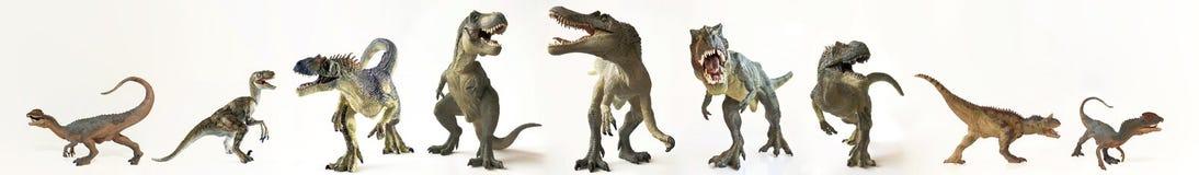 En grupp av nio dinosaurier i rad Royaltyfria Bilder