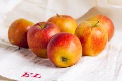 En grupp av nya äpplen på en homespun kitchentowel för gammal tappning royaltyfri foto
