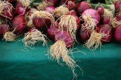 En grupp av organiska röda lökar på en grön bordduk Royaltyfri Fotografi