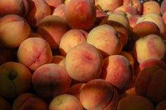 En grupp av persikor Arkivbild