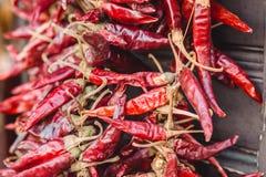 En grupp av röda chilipaprikahängningar på ett rep Varm peppar är populär kryddig för mat och favorit- garnering i Ungern arkivfoto