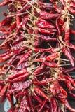 En grupp av röda chilipaprikahängningar på ett rep Varm peppar är populär kryddig för mat och favorit- garnering i Ungern fotografering för bildbyråer