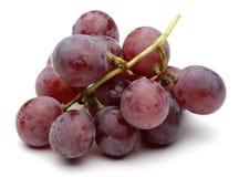 En grupp av röda druvor royaltyfria foton