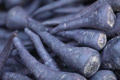En grupp av saftiga svarta morötter arkivfoton