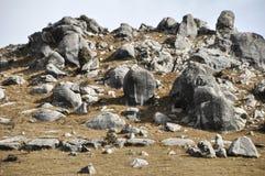 En grupp av stenar Arkivfoto