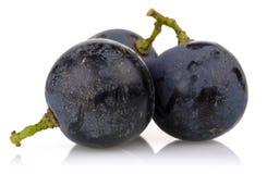 En grupp av svarta druvor arkivfoton