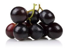 En grupp av svarta druvor royaltyfri bild