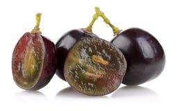 En grupp av svarta druvor royaltyfria foton