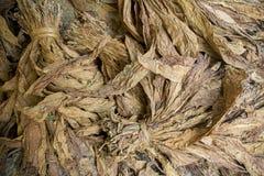 En grupp av torra tobak i Dhaka, manikganj, Bangladesh arkivfoton