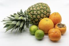 En grupp av tropiska frukter royaltyfri bild