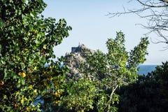 En grupp människor överst av en klippa I förgrunden finns det träd och guling-gräsplan lövverk Arkivbilder