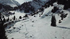 En grupp människor promenerar en snöig bana i bergen bland granarna stock video