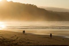 En grupp människortrek längs den våta kusten på skymning Arkivfoto