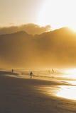 En grupp människortrek längs den våta kusten på skymning Royaltyfria Bilder