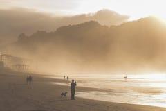 En grupp människortrek längs den våta kusten på skymning Arkivfoton