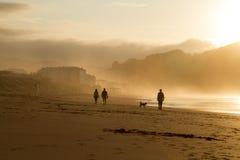 En grupp människortrek längs den våta kusten på skymning Arkivbild