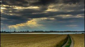 En grusväg till och med ett fält av korn lager videofilmer