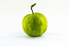 En guava på vit bakgrund Royaltyfri Fotografi