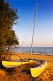 Catamaran Royaltyfri Bild