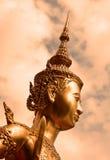 En guld- staty royaltyfri foto