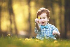 En gullig ung pojke i ett fält av blommor Royaltyfri Foto