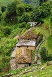 En gurungby i den Annapurna fristadslingan. Himalayas Ne royaltyfria bilder