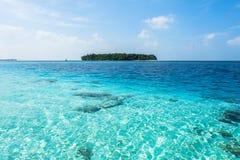 En härlig ö i Maldiverna Royaltyfri Fotografi