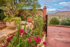 En härlig ökenträdgård i Marocko royaltyfri fotografi