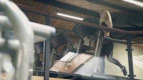 En härlig blondin kör snabbt ner trampkvarnen i korridoren lager videofilmer