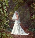 En härlig brud i en vit klänning med en bukett av blommor Royaltyfria Bilder