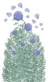 En härlig buske av purpurfärgade vanliga hortensior och olika trädgårdörter stock illustrationer