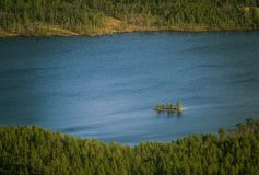En härlig flyg- sikt av en höstskog med sjön i Norge Sörja träd från över Arkivfoto