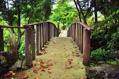 En härlig främre sikt av lite bron Arkivbild